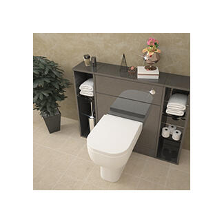 Back To Wall Toilet and Cabinet