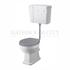 Traditional FITZROY COMFORT HEIGHT TOILET WITH LOW LEVEL CISTERN