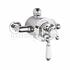 BAYSWATER DUAL THERMOSTATIC EXPOSED VALVE WITH WHITE INDICES