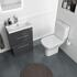 Comfort Height Toilet with rimless thin seat
