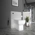Bathroom back to wall toilet in grey