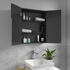 Mirror Cabinet with Open Doors showing glass shelves for Patello, Pemberton, Sonix and Jivana