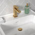 Angled Top view of BC Gold Tap with Basin and Gold Click Waste for Jivana, Chester, Sonix, Patello and Pemberton