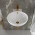 Tesla Round Wash Basin with Gold Tap