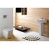 White Back To Wall Pan And Soft Close Seat With Ceramic Basin and Pedestal