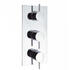 Elite Thermostatic Shower Valve Portrait 3 Control System for Contemporary Bathroom