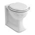 Arcade  Back-to-Wall Toilet Pan And Seat curved High Quality Toilet