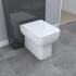 Close up of Back to Wall Toilet (Pan & Seat)