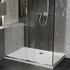 Room scene showing rectangular low profile raised shower tray