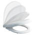 Curve & Carbamide Soft Close Toilet Seat Contemporary Design and White Finish