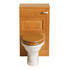Dorchester White back To Wall Pan Elegant Curved Bathroom Toilet