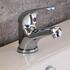 Poma Basin Mono Tap With Popup Waste