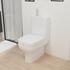 bathroom toilet with soft close seat