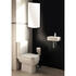 Trax Series 600 Cloakroom Suite