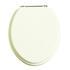Wooden Toilet seat White Ash/Chrome High Quality