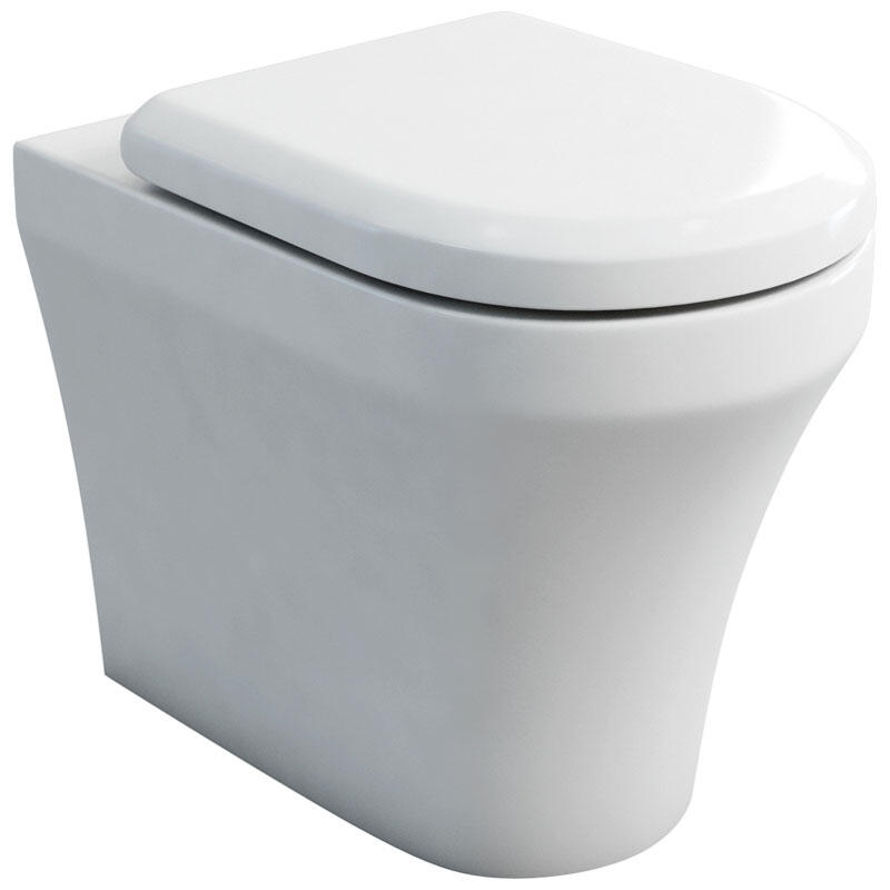 Fine wall hung WC and soft close seat