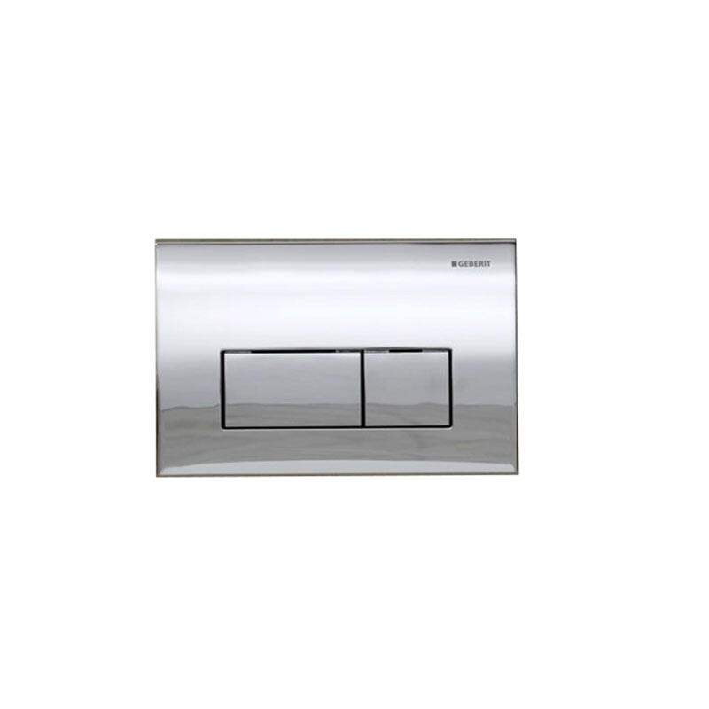 Kappa50 dual flush plate,stainless steel