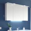 Solitaire 6025 mirror cabinet incl LED lighting in the canopy - 178381