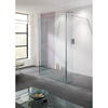 Rivera  Walk In Glass Shower Panels